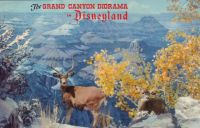 thumbnail_disneyland-grand-canyon-postcard-NT0253.jpg